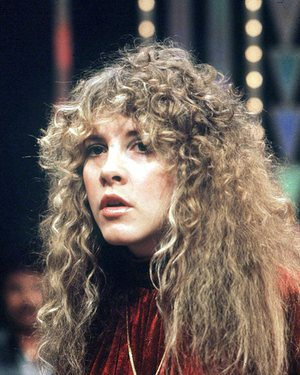 """Stevie Nicks ""The Guardian"" image"