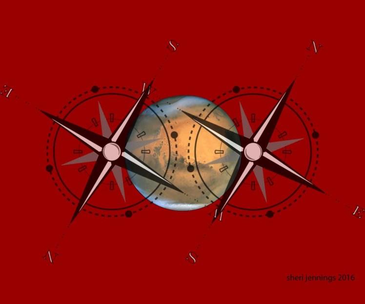 Mars Pole Flip image