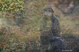 Spring Dandelion image