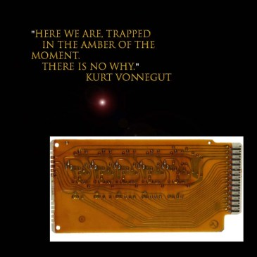 Here we are, trapped in the amber of the moment. There is no why. Kurt Vonnegut